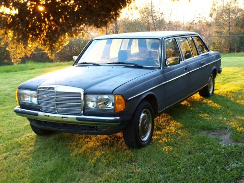 Rare 1985 Mercedes Benz 300 Series limousine for sale